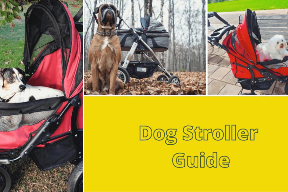 Dog Stroller Guide