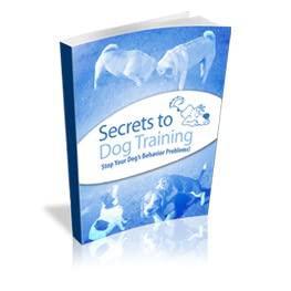 Secrets To Dog Training_