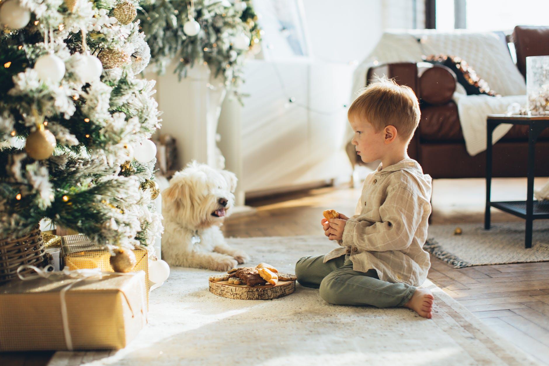 boy in brown hoodie and his pet sitting beside a christmas tree