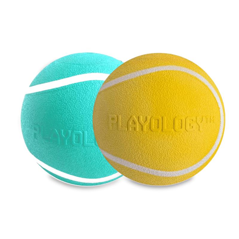 Interactive Dog Toys -Balls
