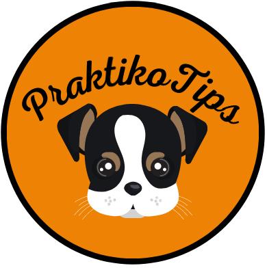 praktikotips logo