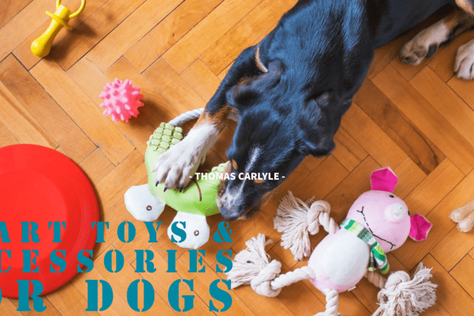 smart toys for dogs