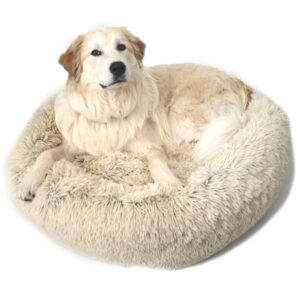dog calm bed