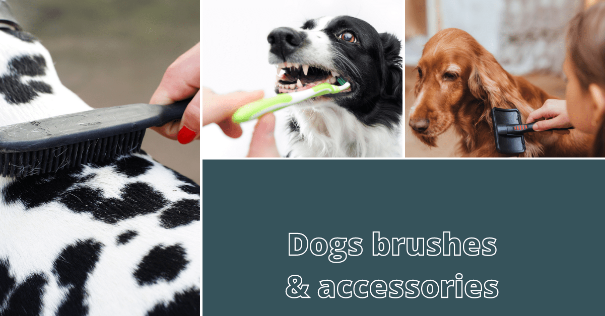 Dogs brushes & accessories
