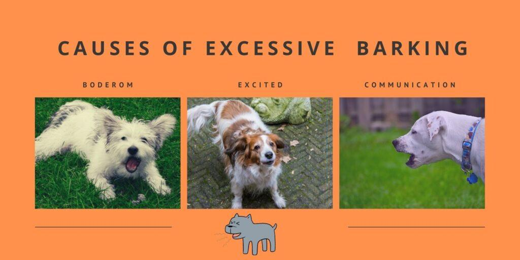 causes of excessive or inappropriate barking