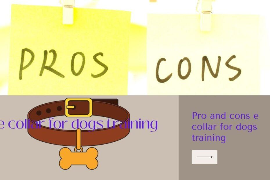 Pro and cons e collar for dogs training