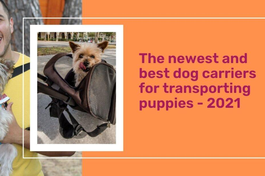 The newest and best dog carriers